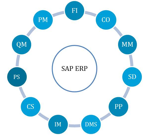 introduction to erp system Implementation and design practices for business processes in enterprise resource planning (erp) systems the course will examine and apply techniques used in sap erp and s/4 hana system for system configuration and integration, with a focus on financial accounting, logistics, controlling, and production.